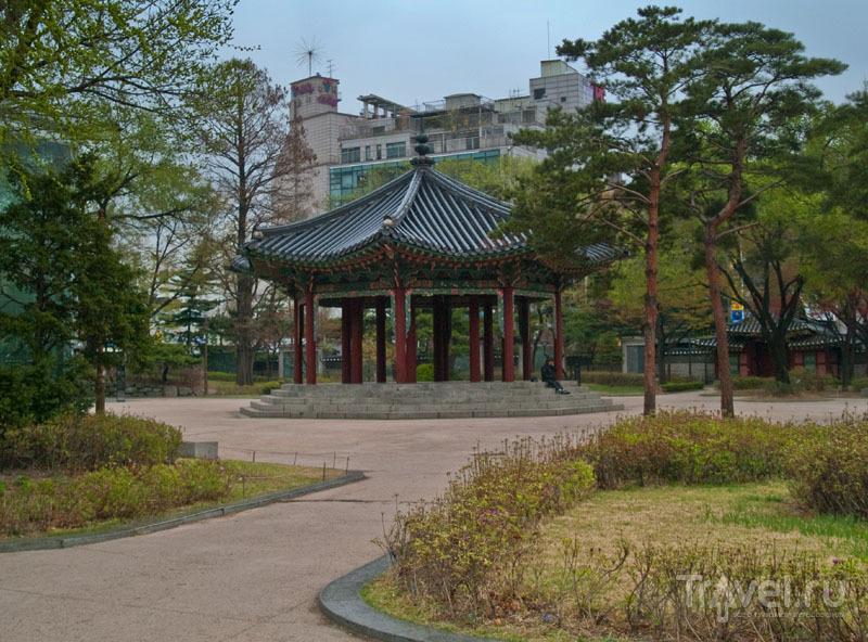 Парк Tapgol в Сеуле / Фото из Южной Кореи