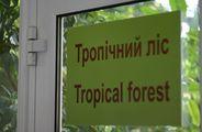 ботанический сад / Украина