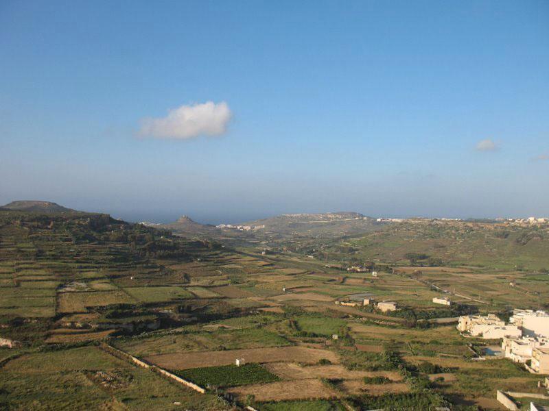Остров Гоцо в дымке: поля разделены каменными стенками / Фото с Мальты