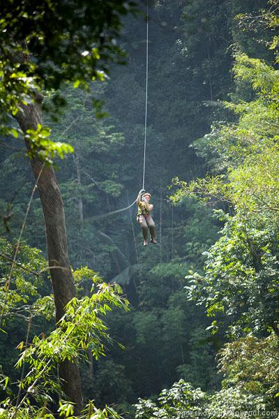 Полет над джунглями в Лаосе / Фото из Лаоса