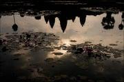 у кромки воды / Камбоджа