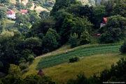 горы / Босния и Герцеговина