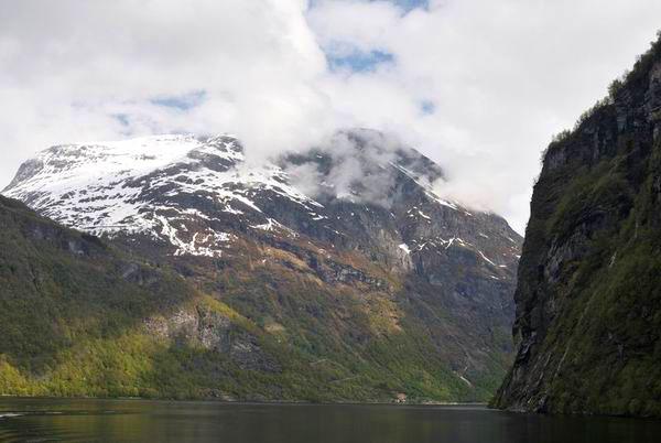 В лесах Норвегии / Фото из Норвегии