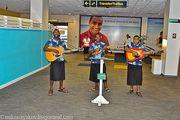 фольклорные музыканты / Фиджи