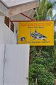 shark diving / Фиджи
