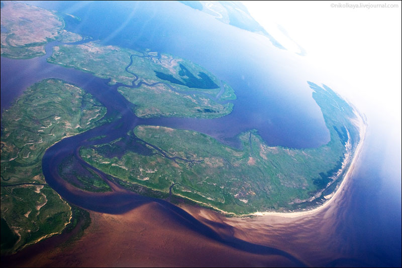 Берег Белого моря в районе Архангельска / Фото из России