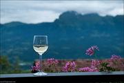 вино / Лихтенштейн