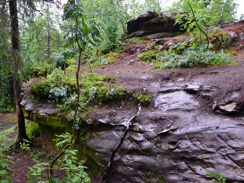 Одиночные камни на подходах к Каменному городу / Фото из России