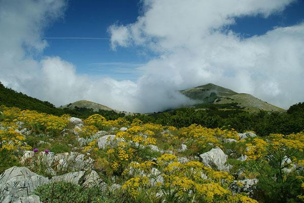 Район Montie Madonie / Фото из Италии