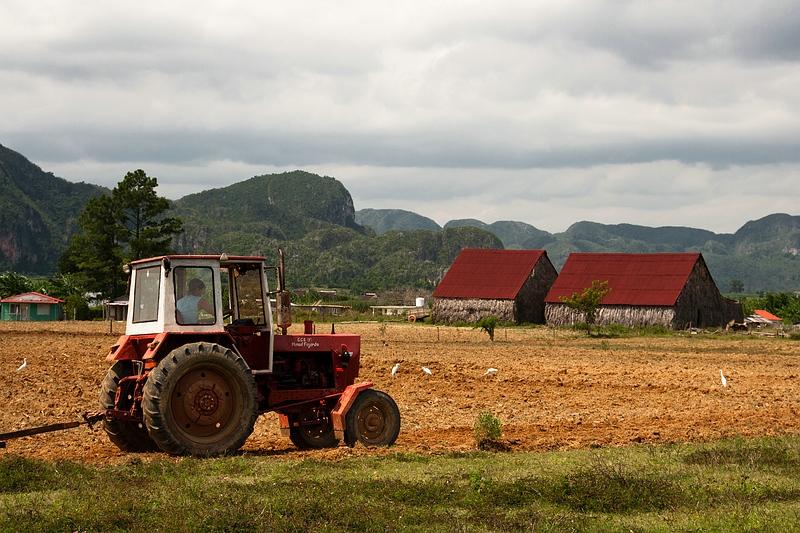Трактор на кубинском поле / Фото с Кубы
