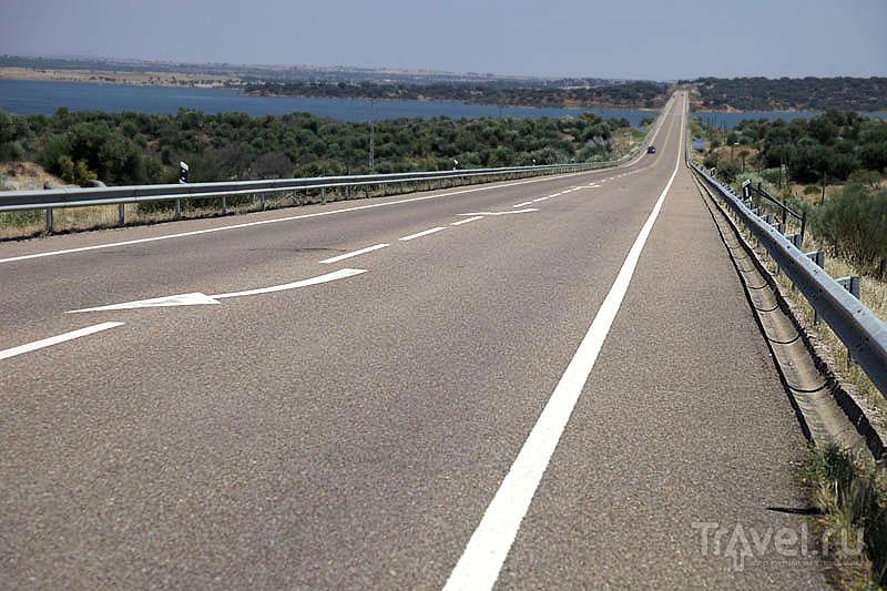 Идеальная португальская дорога / Фото из Португалии