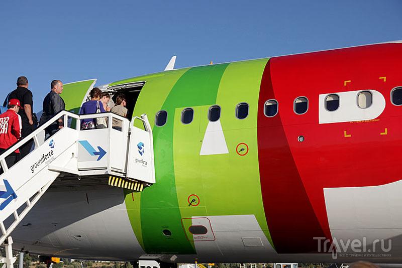 Ливрея самолета TAP Portugal / Фото из Португалии