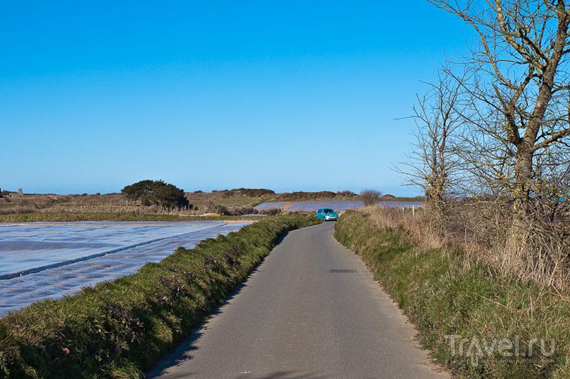 Поля на острове Джерси / Фото из Великобритании