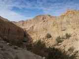 пещера Давида / Израиль