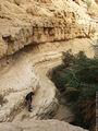 ручей Давида / Израиль