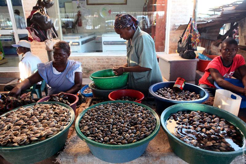 Мидии на рыбном базаре в Мапуту, Мозамбик / Фото из Мозамбика