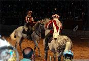 шоу с конями / Испания