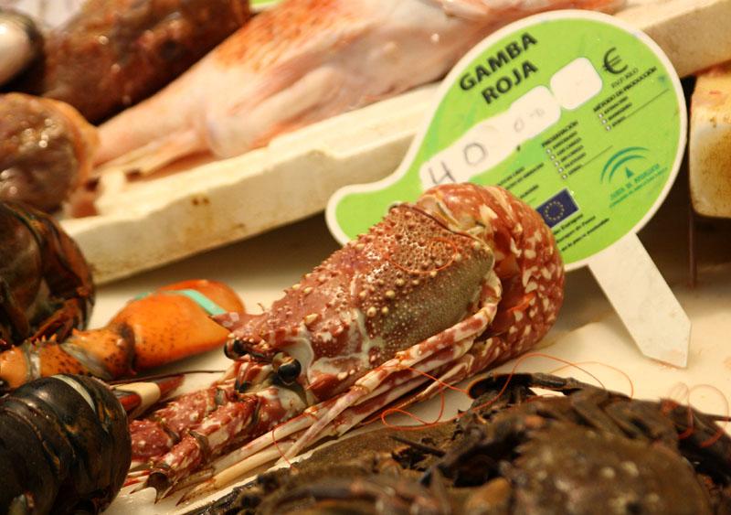 Морепродукты на рынке в Малаге, Испания / Фото из Испании