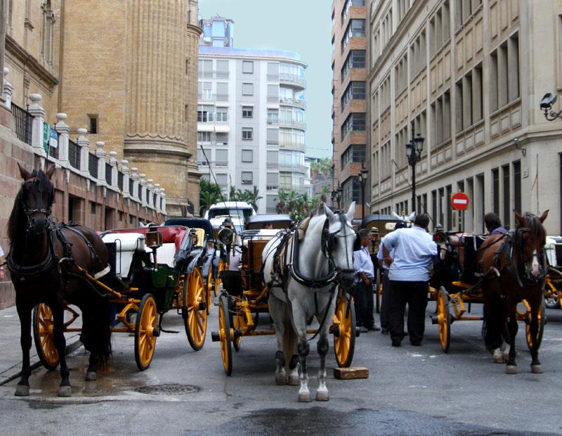 Конные повозки в Малаге / Фото из Испании