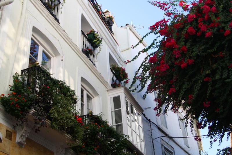 В Марбелье, Испания / Фото из Испании