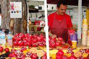 Предприимчивый соковыжимальщик / Турция