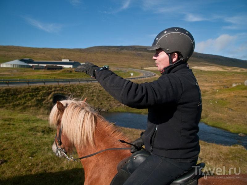 Хозяин фермы-конюшни Berg Hestar / Фото с Фарерских островов