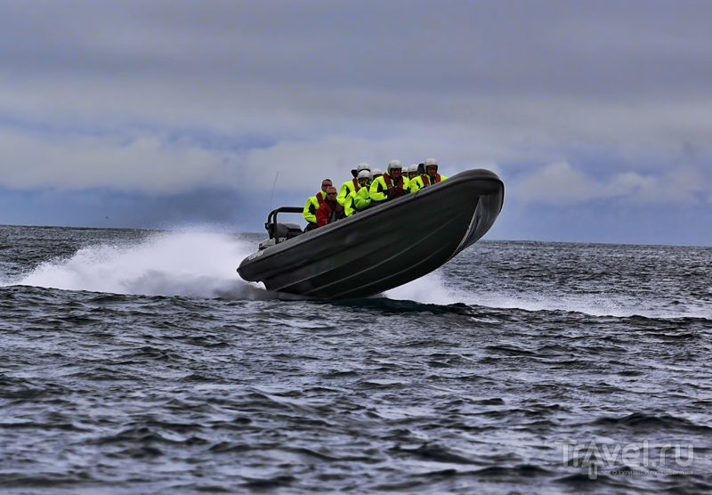 """Заплыв на """"зодиаке"""" по Атлантике / Фото с Фарерских островов"""