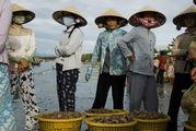 Корзины с уловом / Вьетнам
