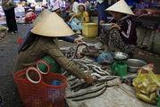 Продают угрей / Вьетнам