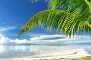 Пальмы, пляж и море / Филиппины