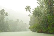 К реке Лобок / Филиппины