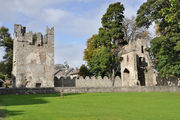 Monkstown castle / Ирландия