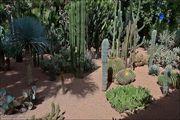 Извилистые тропинки / Марокко