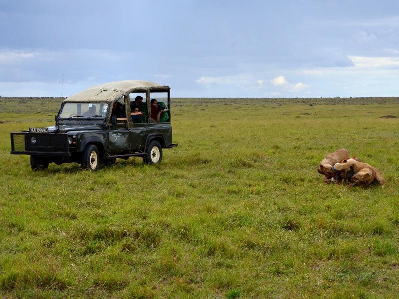 Автомобиль для сафари в Кении / Фото из Кении