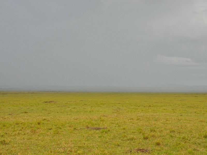 Пасмурный день в Кении / Фото из Кении