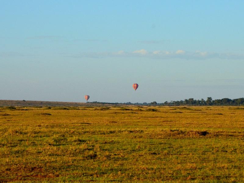 Сафари на воздушном шаре в Кении / Фото из Кении