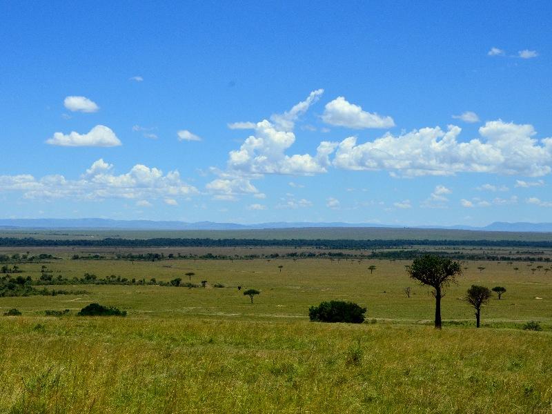 Пейзаж саванны в Кении / Фото из Кении