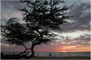 Пляж на закате / США