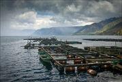 Садки для рыбы / Индонезия