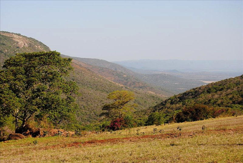 Холмы Свазиленда / Фото из Свазиленда