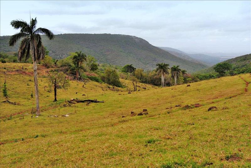Природа Свазиленда / Фото из Свазиленда