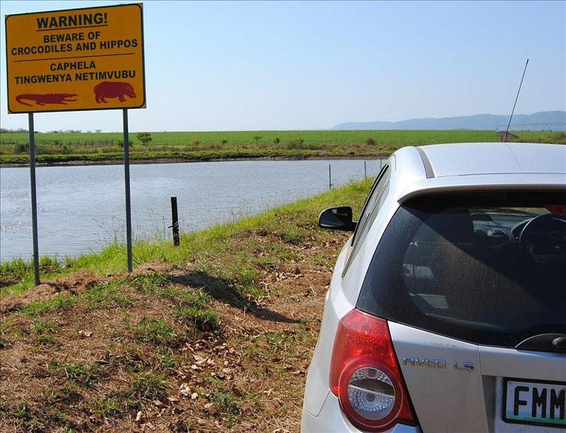 Река с крокодилами и бегемотами в Свазиленде / Фото из Свазиленда
