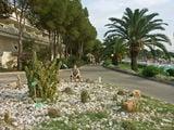 Сад кактусов / Италия