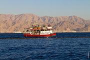 Наблюдение за дельфинами / Израиль