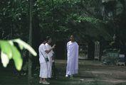 Молодая монахиня / Таиланд