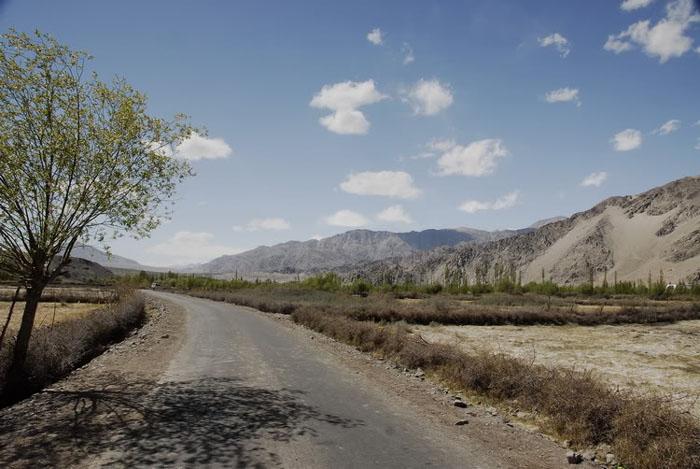 Сельская дорога в Индии / Фото из Индии