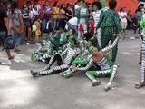 Группа рептилий / Филиппины
