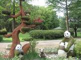 На аллеях зоопарка / Южная Корея