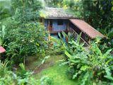 Отель Totem / Коста-Рика