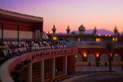 Площадка для шоу / Египет
